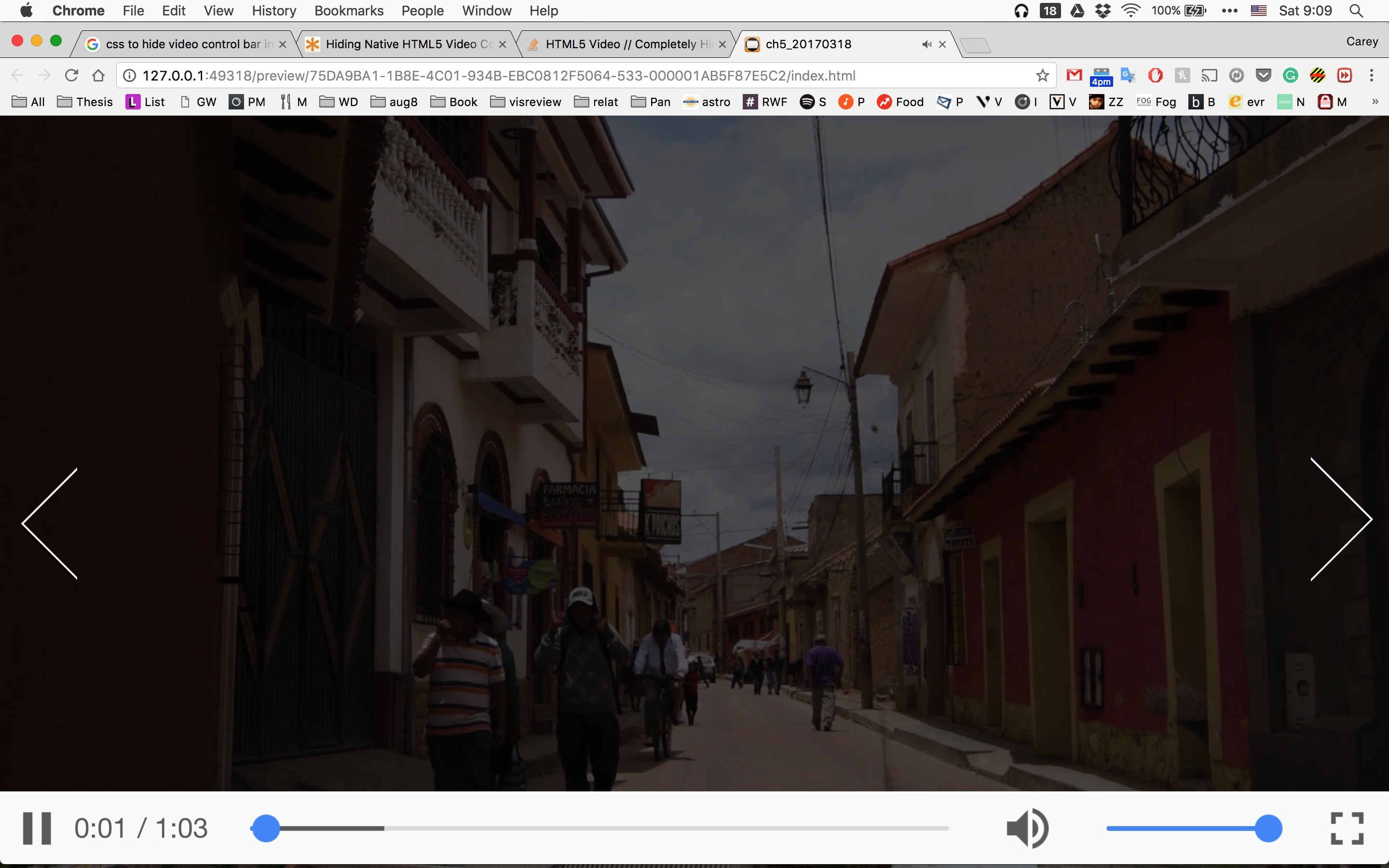 CSS   How to Hide Video Control Bar? - Tumult Forums