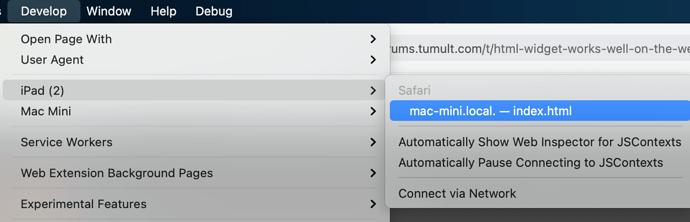 safari-developer-tools-ipad
